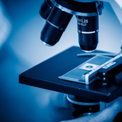 Microbiologist examining slide with help of compound microscope. blue toned images.